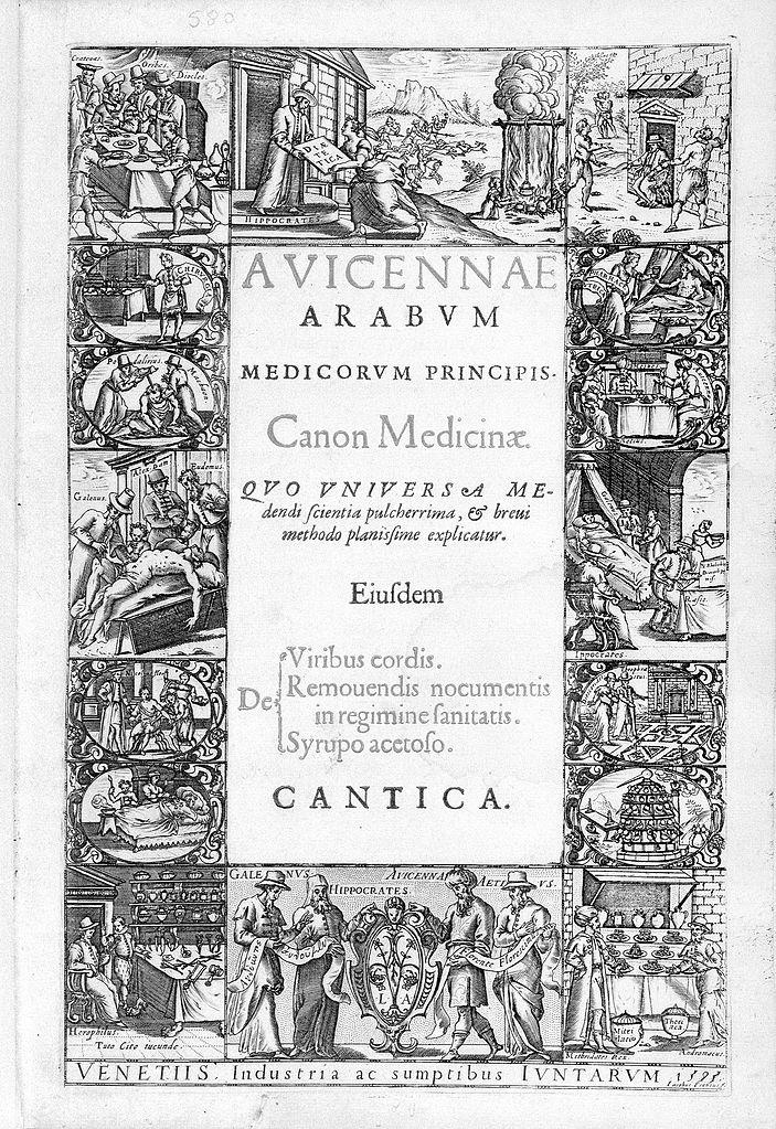 the canon of medicine pdf