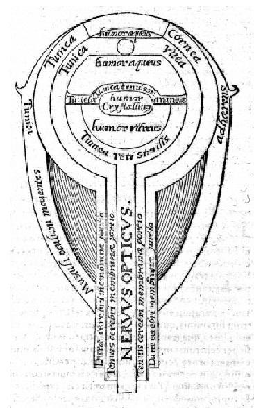 h s diagram